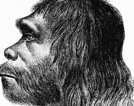 Neanderthal picture